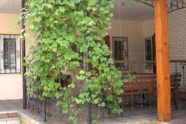 Гостевой дом «Отдых у Галины»